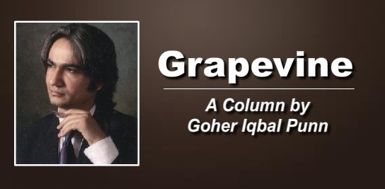 goher-column picture