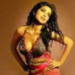 shriya saran hot-showbizbites-05