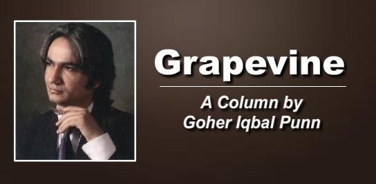 goher-column-picture
